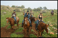 israel horse riding